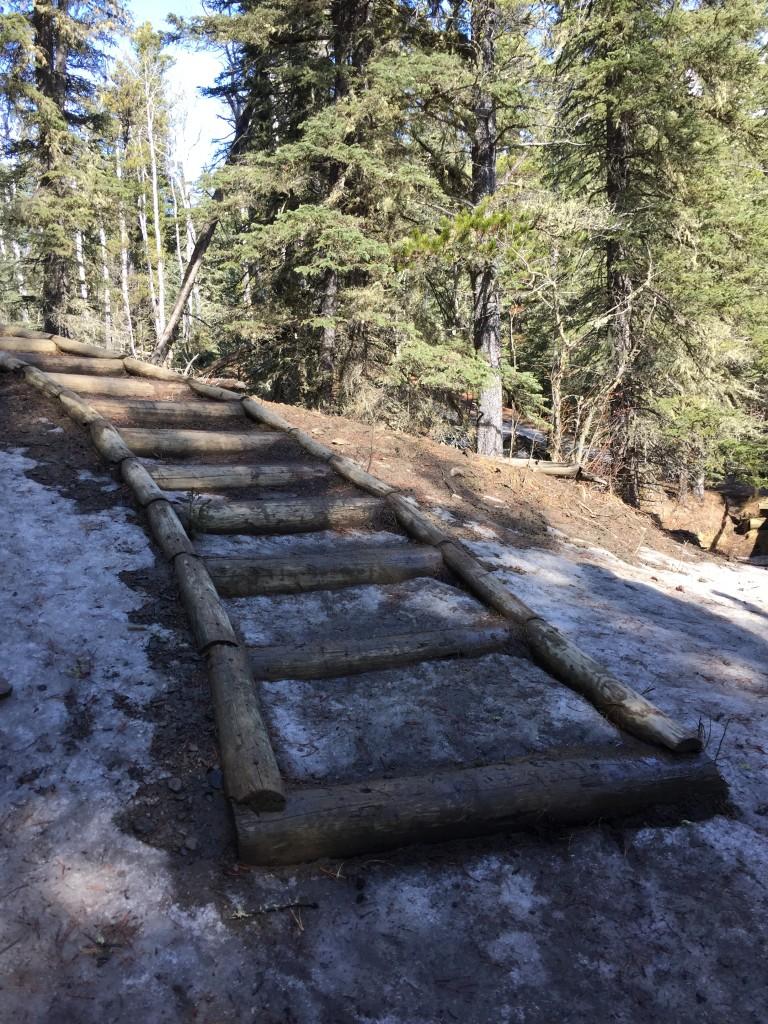 Fullerton Loop trail