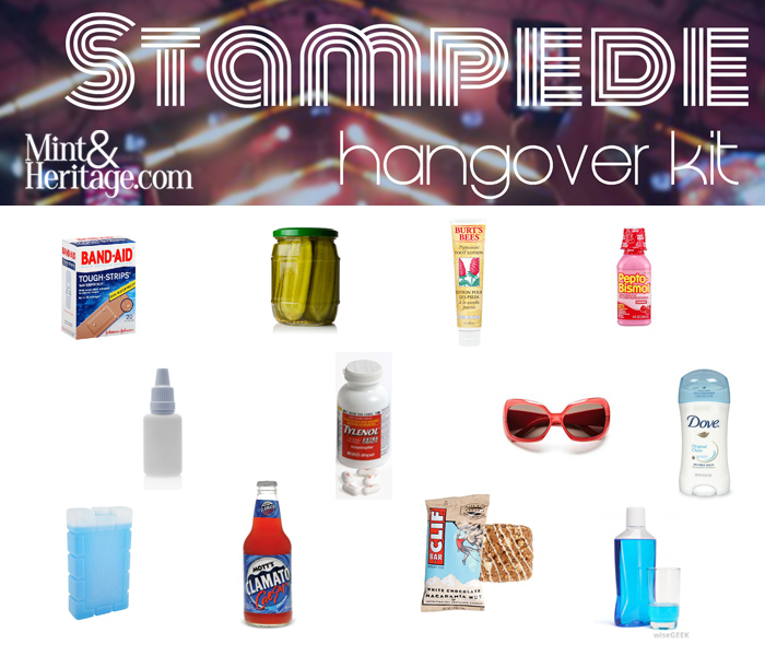 Diy make your own stampede hangover kit mint heritage diy make your own stampede hangover kit solutioingenieria Choice Image