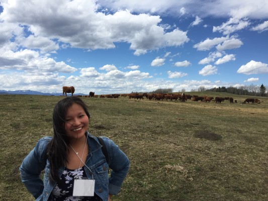 Visiting CL Ranches