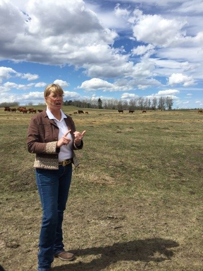 Owner and rancher Cherie Copithorne-Barnes.
