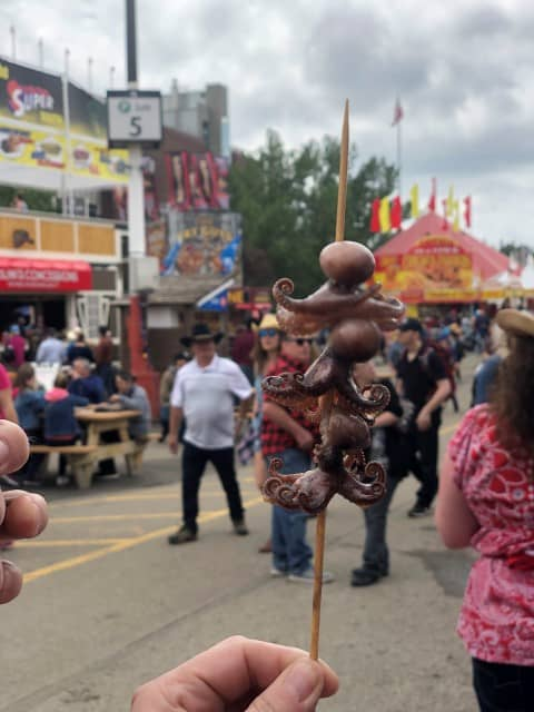 Mini octopus lolly on a stick at Calgary Stampede