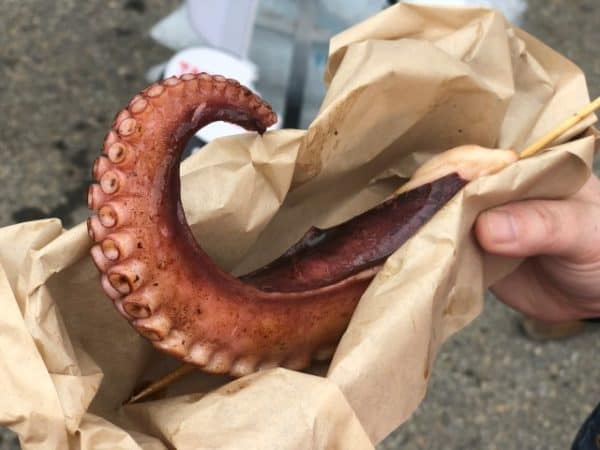 Large octopus tentacle at Calgary Stampede midway