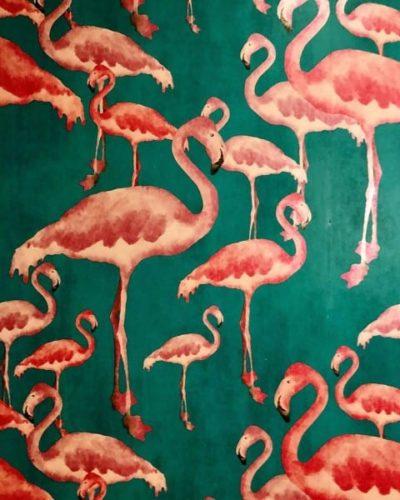 Flamingos wallpaper in Ricardo's bathroom